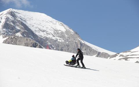Адаптирани алпийски ски